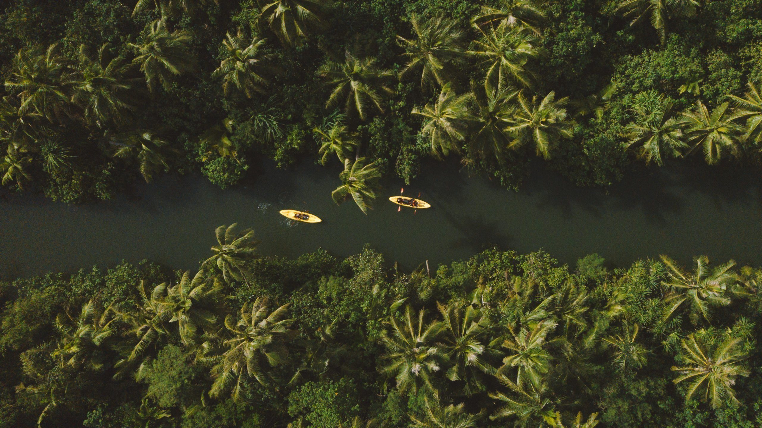 Drone photo overview of the Talofofo River with Kayakers paddling through dense jungle on Guam