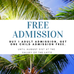Valley of the Latte Kids Free for Summer Promotion