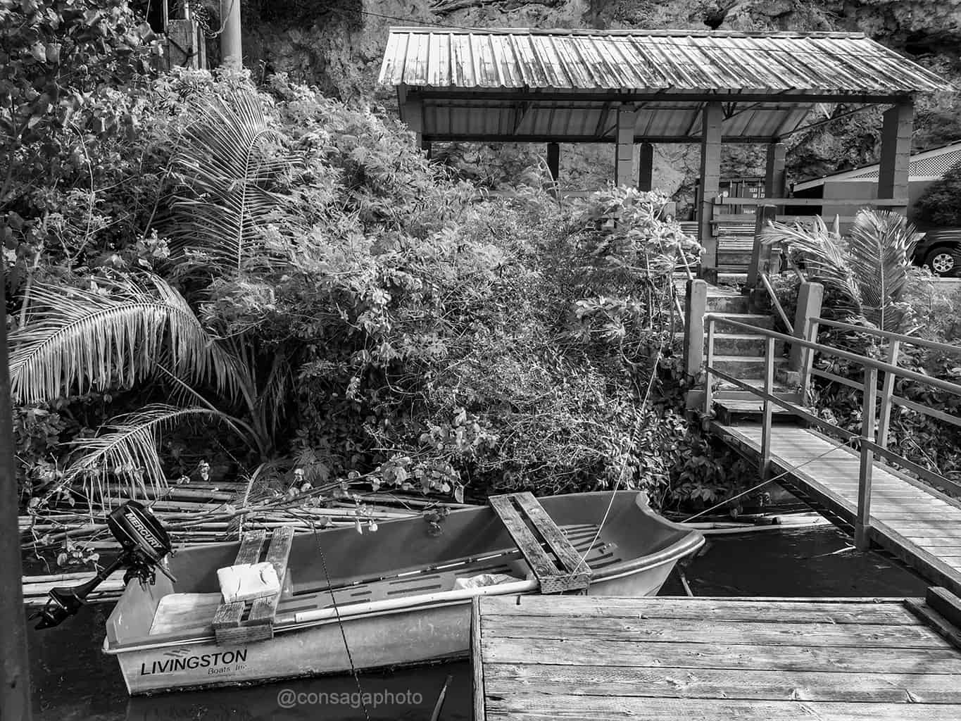 black and white river cruise black and white culture culture and tradition carabao and animal sanctuary hiking on guam natural beauty An Outdoor Adventure of culture and history of guam with a River cruise Things to do on Guam Photo Walk Tour with Victor Consaga