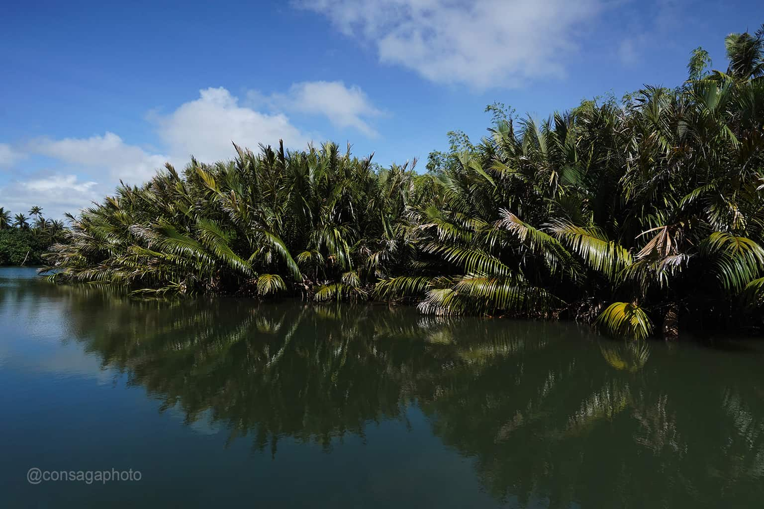 An Outdoor Adventure with a River cruise Things to do on Guam Photo Walk Tour with Victor Consaga