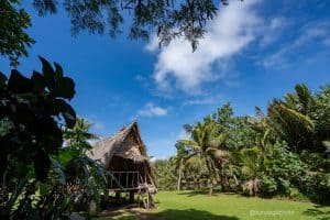 Ancient Chamorro Culture Things to do on Guam Photo Walk Tour with Victor Consaga