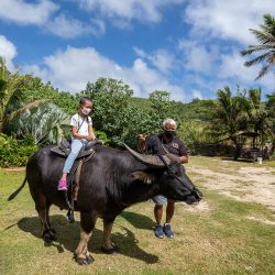 kids free admission at the valley of the latte guam's number 2 outdoor adventure experience with culture and history kids carabao ride