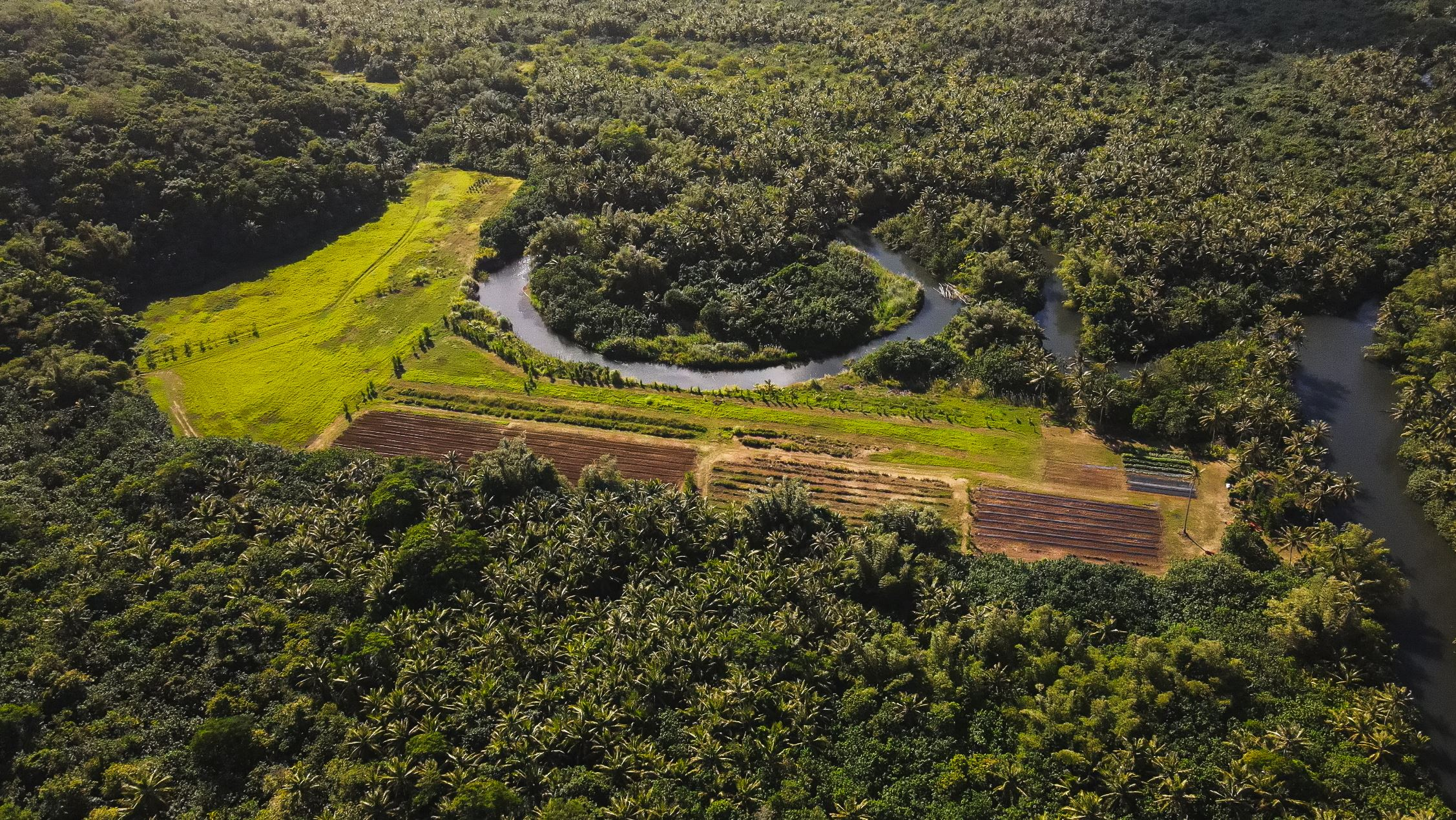 Valley of the Latte, things to do on guam, harvest tours watermelon