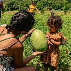 Things to do on guam tour - HARVEST TOUR 2021 The Valley of the Latte is Guam's Safest Outdoor Cultural Adventure Tour perfect for families